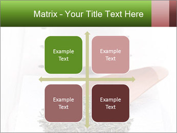 0000082634 PowerPoint Template - Slide 37