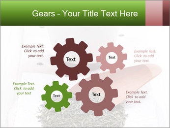 0000082634 PowerPoint Templates - Slide 47