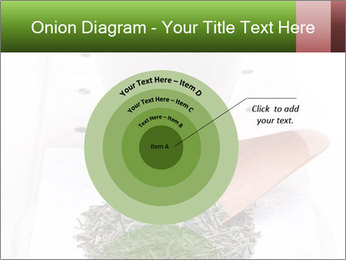 0000082634 PowerPoint Template - Slide 61