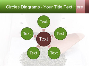 0000082634 PowerPoint Templates - Slide 78