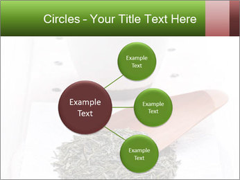 0000082634 PowerPoint Templates - Slide 79