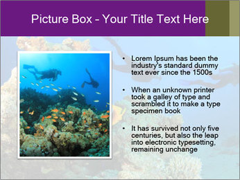 0000082644 PowerPoint Template - Slide 13