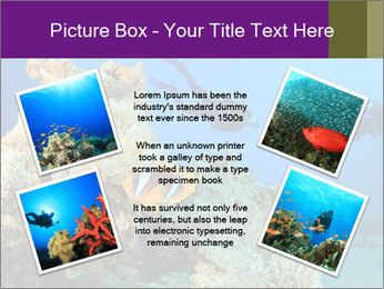 0000082644 PowerPoint Template - Slide 24