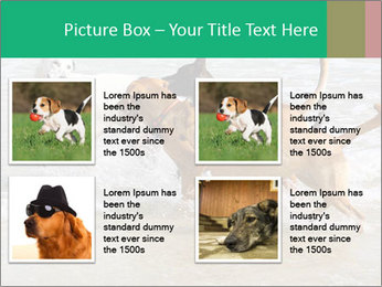 0000082649 PowerPoint Templates - Slide 14