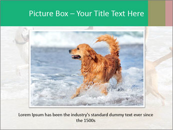 0000082649 PowerPoint Templates - Slide 16
