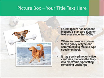 0000082649 PowerPoint Templates - Slide 20