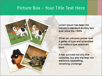 0000082649 PowerPoint Templates - Slide 23