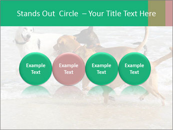 0000082649 PowerPoint Templates - Slide 76