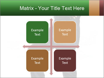 0000082664 PowerPoint Templates - Slide 37