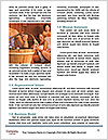0000082668 Word Template - Page 4