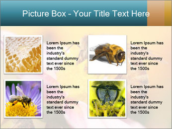 0000082676 PowerPoint Template - Slide 14