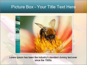 0000082676 PowerPoint Template - Slide 15