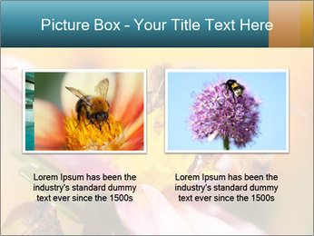 0000082676 PowerPoint Template - Slide 18