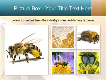 0000082676 PowerPoint Template - Slide 19
