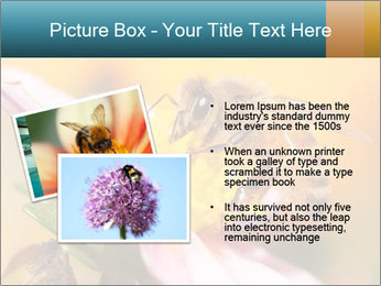 0000082676 PowerPoint Template - Slide 20