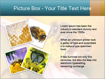 0000082676 PowerPoint Template - Slide 23