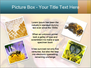 0000082676 PowerPoint Template - Slide 24