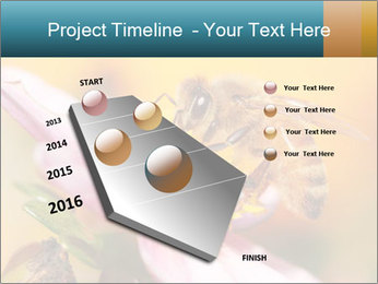 0000082676 PowerPoint Template - Slide 26