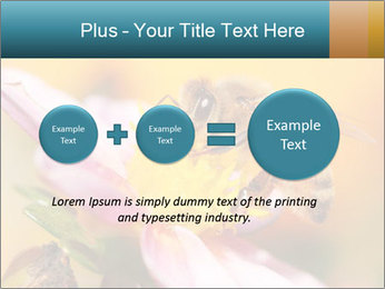 0000082676 PowerPoint Template - Slide 75