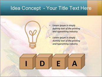 0000082676 PowerPoint Template - Slide 80