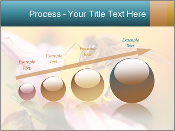 0000082676 PowerPoint Template - Slide 87