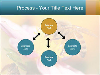 0000082676 PowerPoint Template - Slide 91