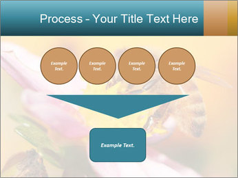 0000082676 PowerPoint Template - Slide 93