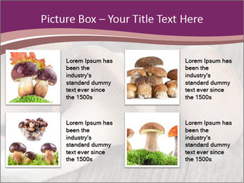 0000082677 PowerPoint Template - Slide 14