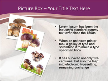 0000082677 PowerPoint Template - Slide 17