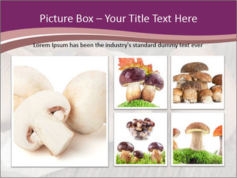 0000082677 PowerPoint Template - Slide 19