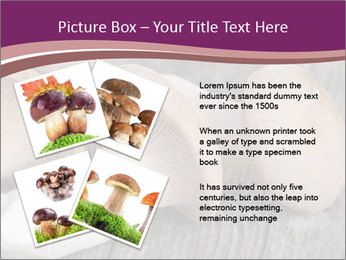 0000082677 PowerPoint Template - Slide 23