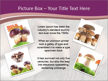 0000082677 PowerPoint Template - Slide 24