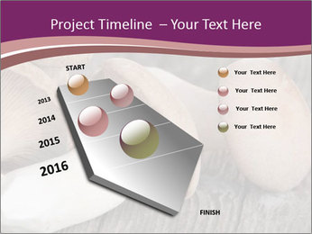0000082677 PowerPoint Template - Slide 26