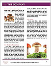 0000082677 Word Template - Page 3