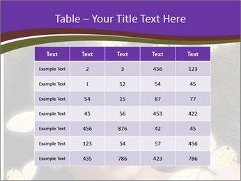 0000082684 PowerPoint Template - Slide 55