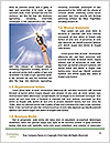0000082692 Word Templates - Page 4