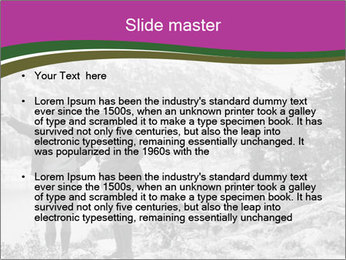 0000082697 PowerPoint Template - Slide 2
