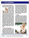 0000082699 Word Template - Page 3