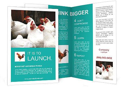 0000082702 Brochure Template