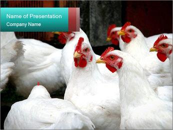 0000082702 PowerPoint Template - Slide 1