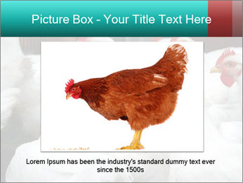 0000082702 PowerPoint Template - Slide 15