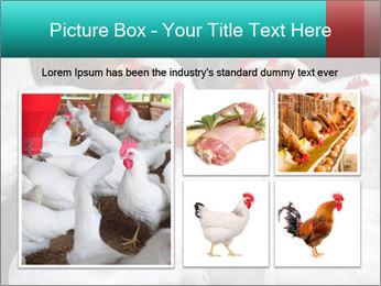 0000082702 PowerPoint Template - Slide 19