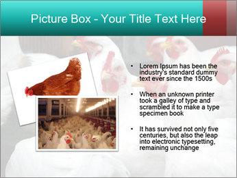 0000082702 PowerPoint Template - Slide 20