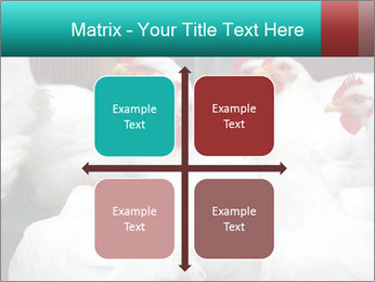 0000082702 PowerPoint Template - Slide 37