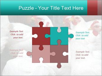 0000082702 PowerPoint Template - Slide 43