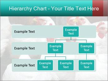 0000082702 PowerPoint Template - Slide 67
