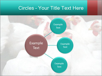 0000082702 PowerPoint Template - Slide 79
