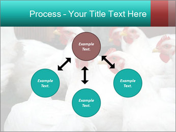 0000082702 PowerPoint Template - Slide 91