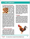 0000082702 Word Templates - Page 3