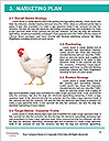 0000082702 Word Templates - Page 8